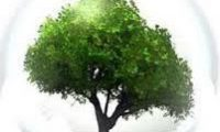 Desarrollo Ambiental